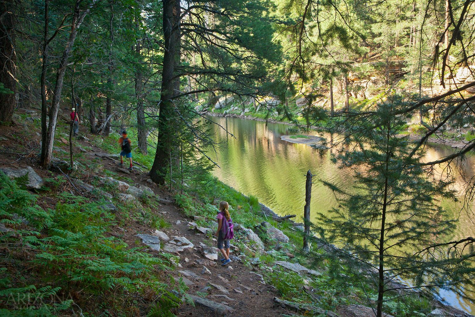 Mogollon Rim Woods Canyon Lake