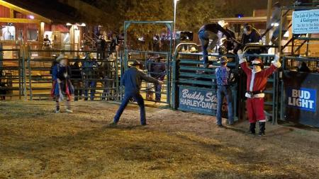 bull rider about to be released