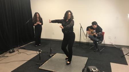 Flamenco Por La Vida
