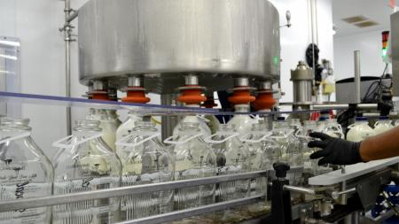 milk bottles being filled