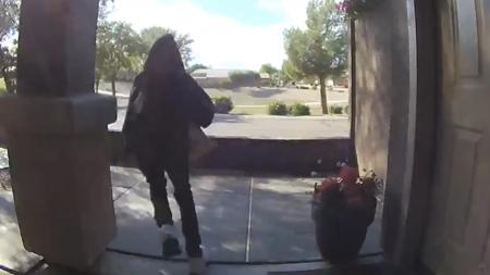 Porch pirate package theft Ring