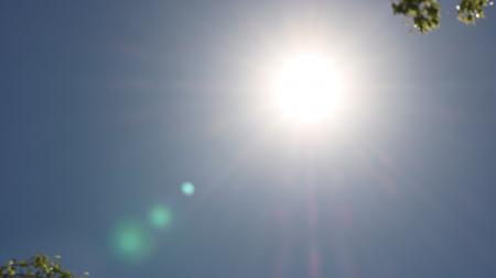 sun in phoenix